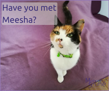 Is Meesha in your social media community?