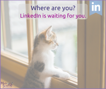 LinkedIn is still here … where are you?
